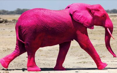 Don't imagine a pink elephant
