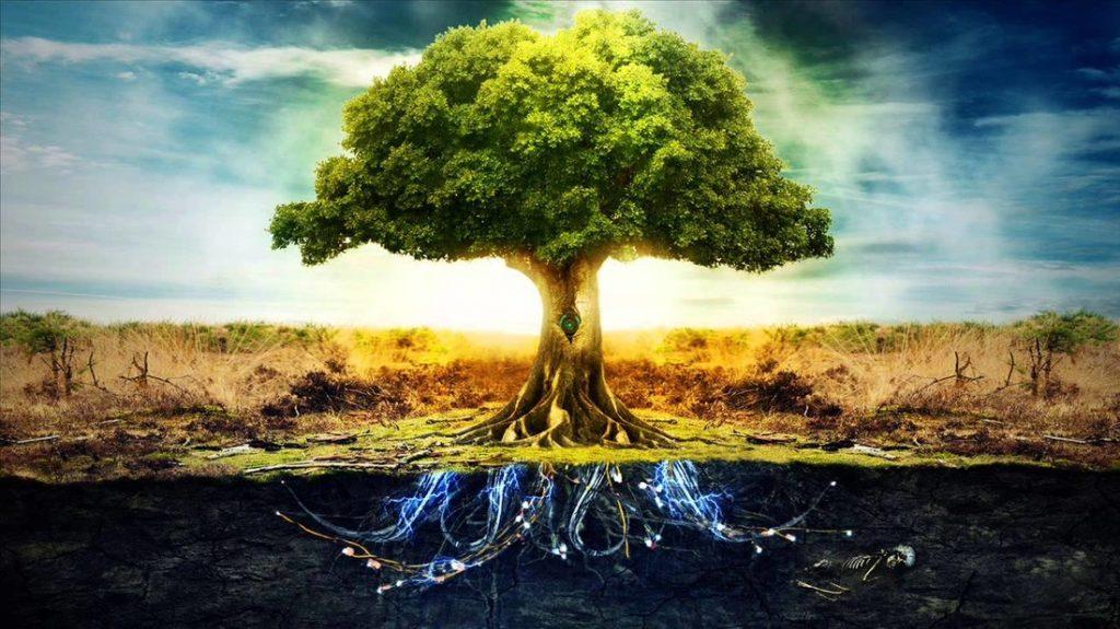 20201225-cosmic-tree-1024x575.jpg